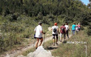 nordic-walking-kekjelzes-turistaut-papp-aniko