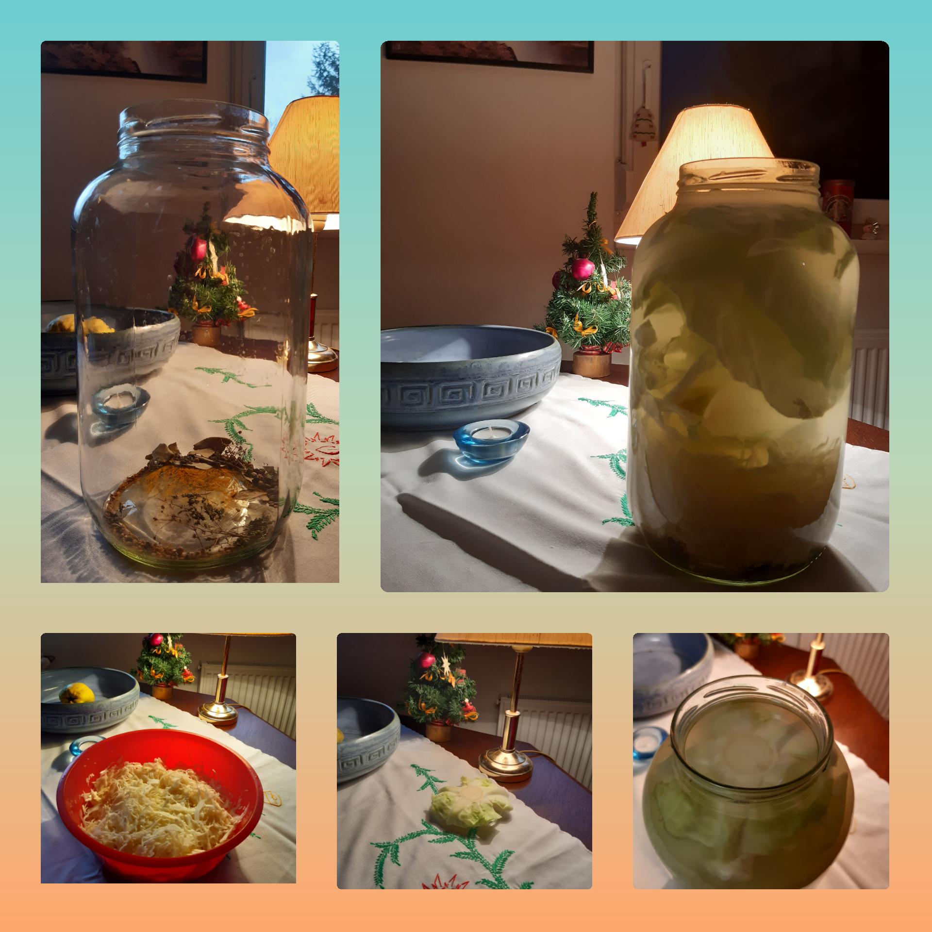 Fermentálj probiotikus savanyú káposztalevet Papp Anikóval