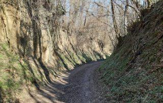 Horhos Zalaapáti nordic walking oktatás